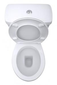 Dual Flush Toilet